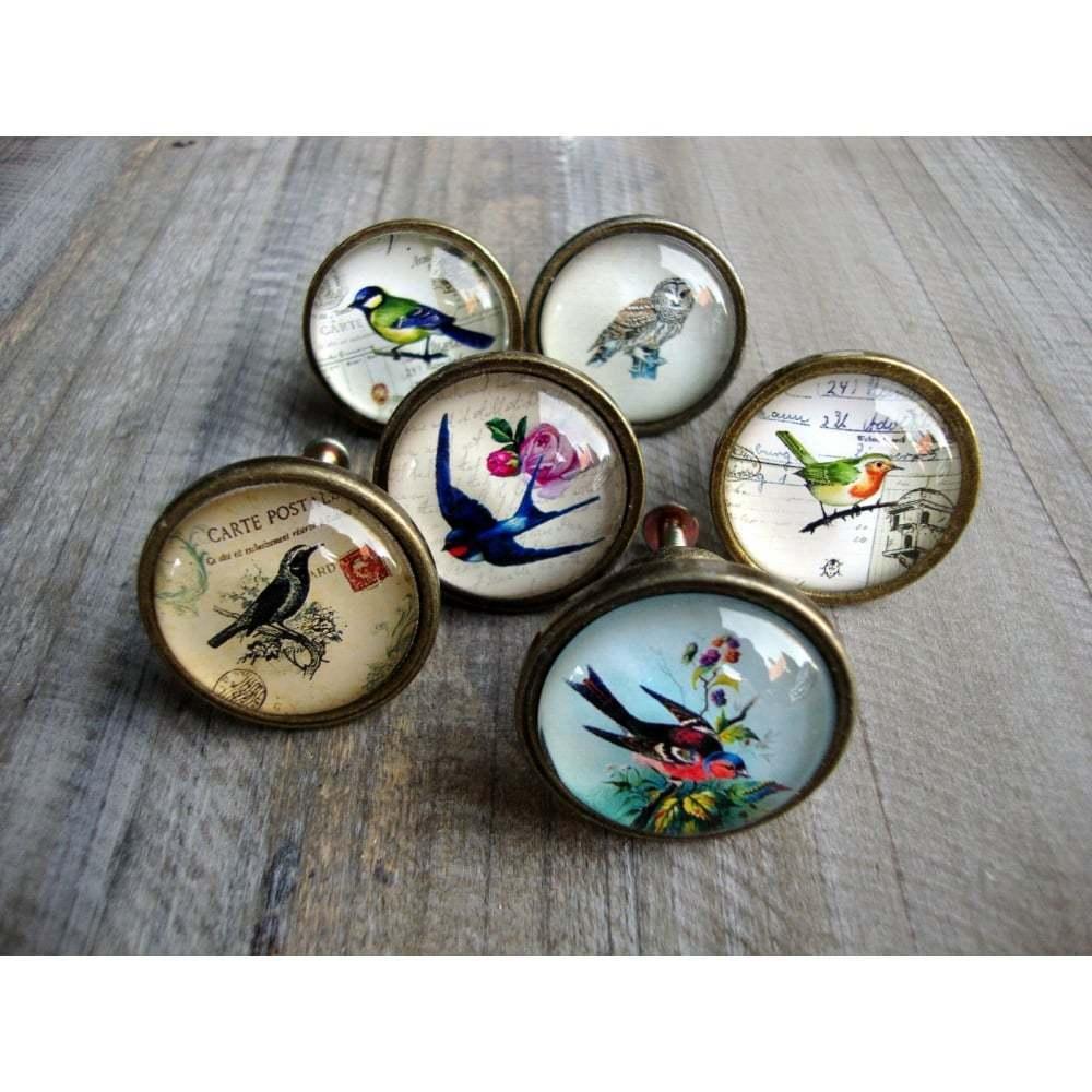 bird door knobs photo - 20