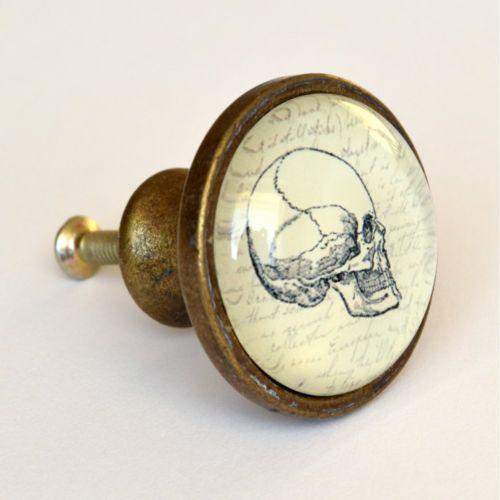 brass cupboard door knobs photo - 11