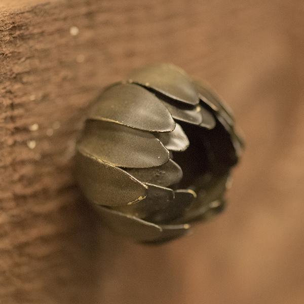 flower door knob photo - 19