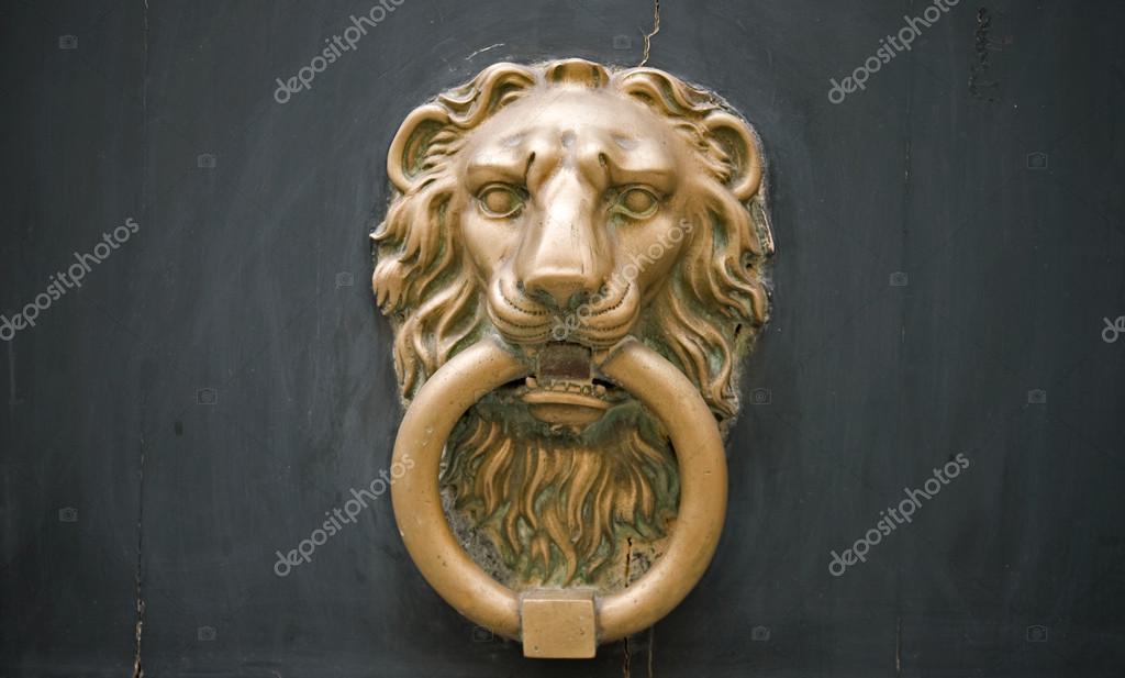 lion head door knob photo - 18