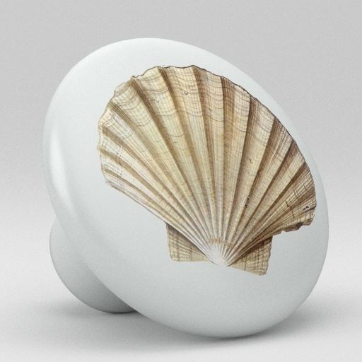 seashell door knobs photo - 13