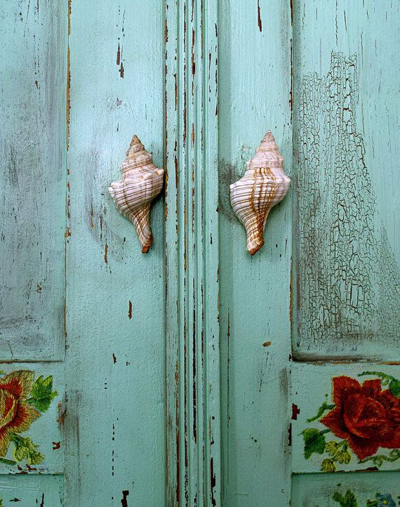 seashell door knobs photo - 16