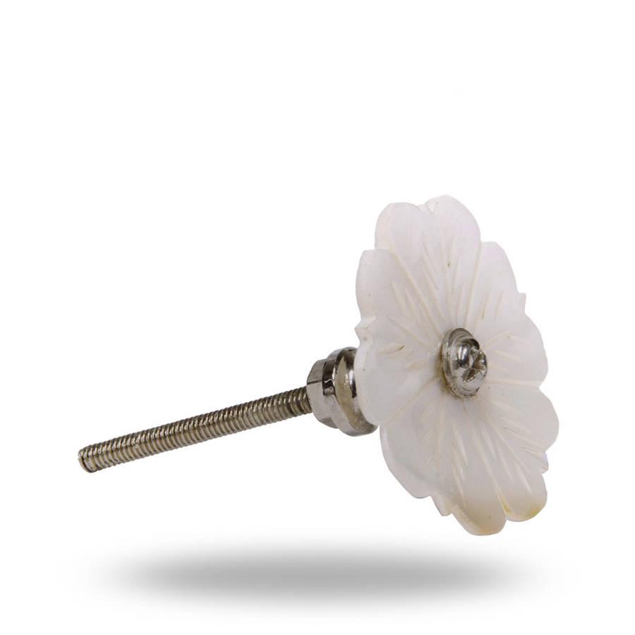 shell door knobs photo - 14