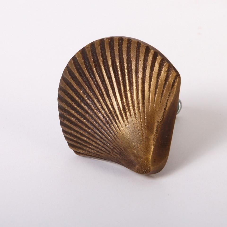 shell door knobs photo - 18