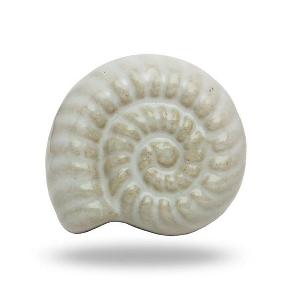 shell door knobs photo - 2