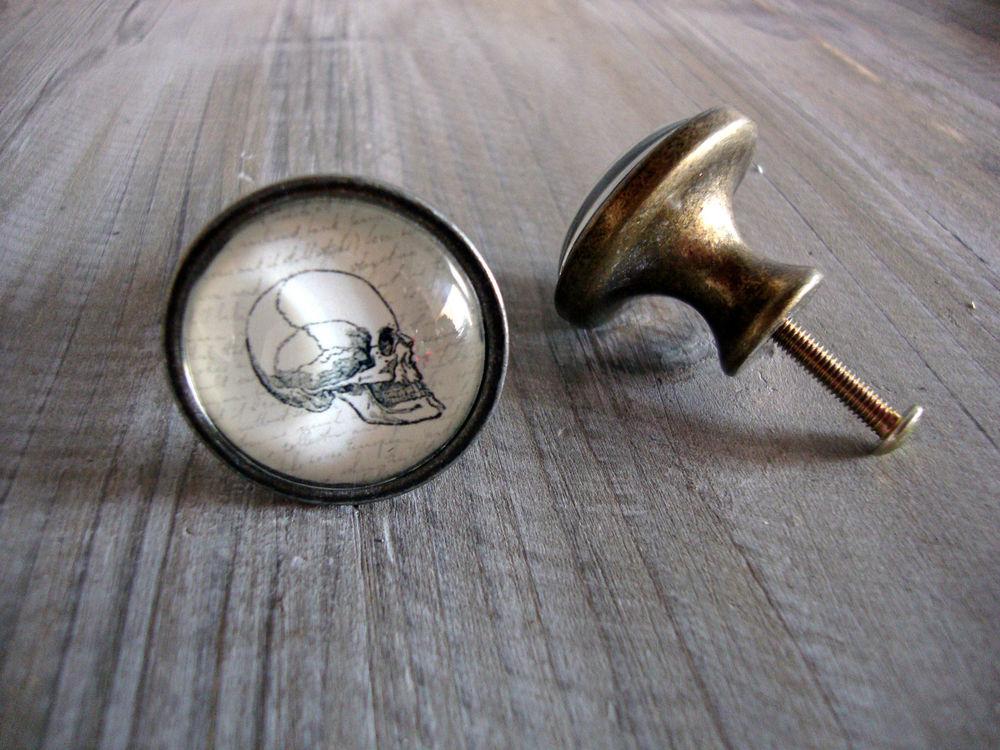 skull door knobs photo - 10