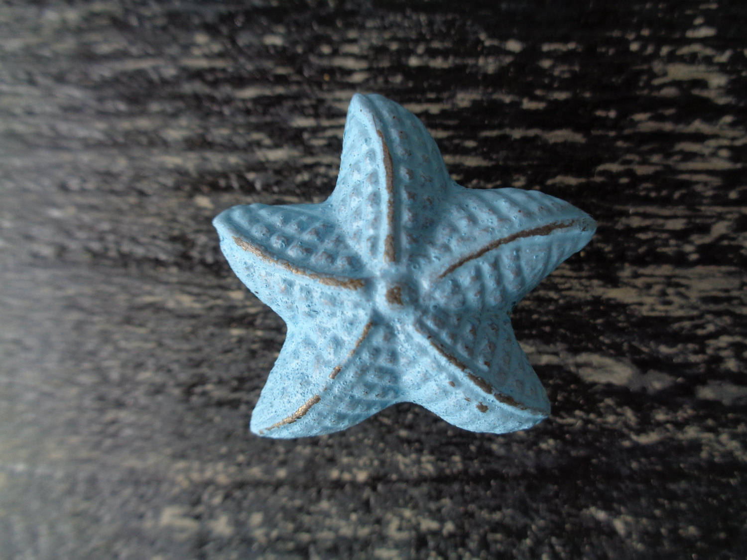 starfish door knobs photo - 20