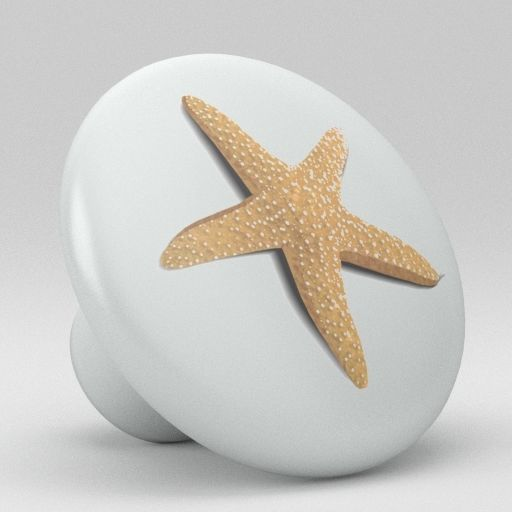 starfish door knobs photo - 5