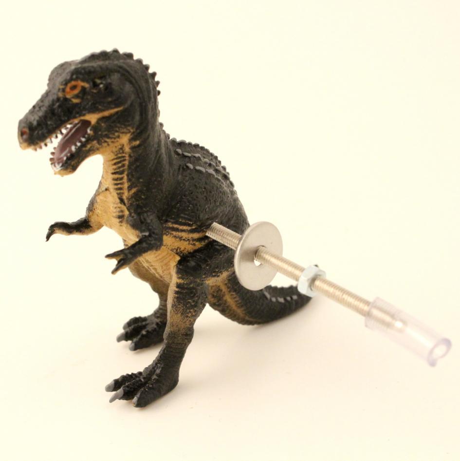 dinosaur door knobs photo - 1