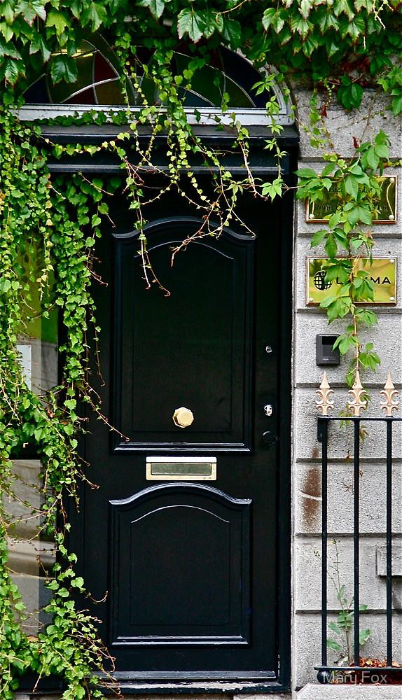door knob in center of door photo - 10