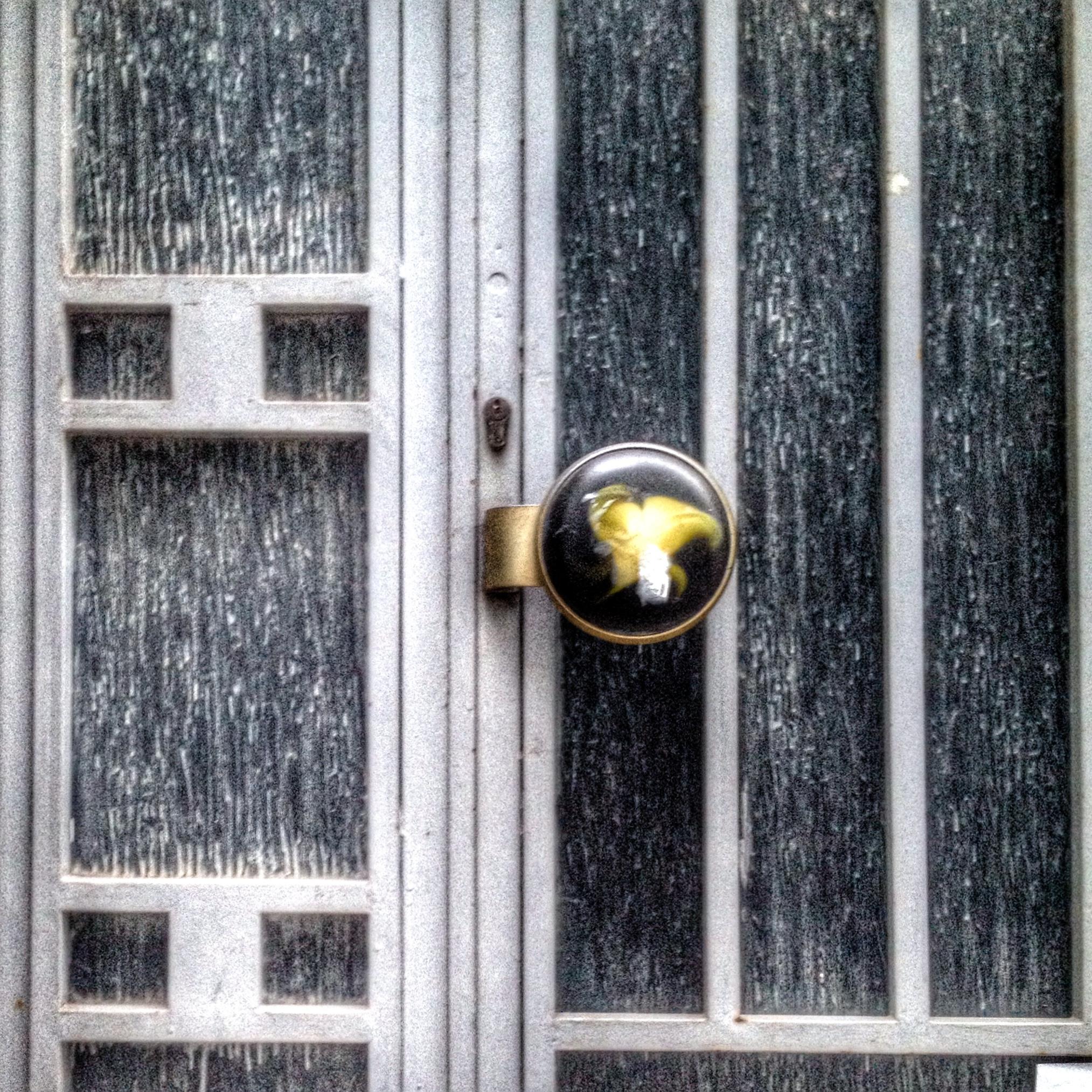 fun door knobs photo - 8