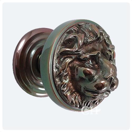 lion head door knob photo - 14