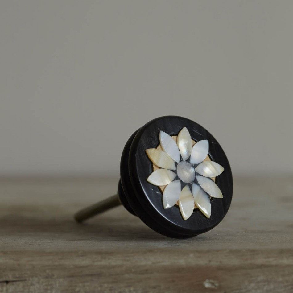 mother of pearl door knobs photo - 2
