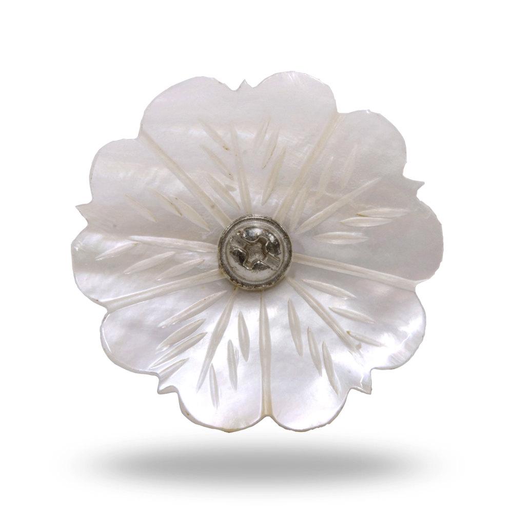 mother of pearl door knobs photo - 7