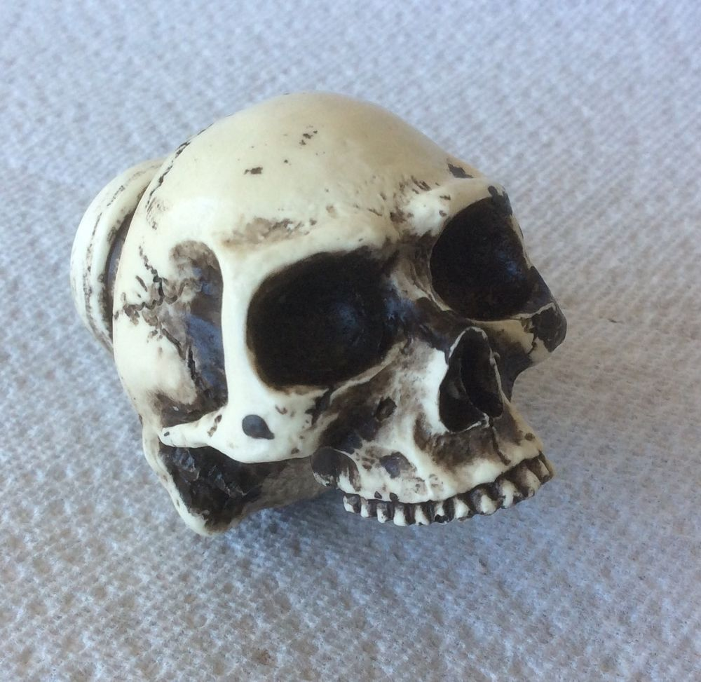 skull door knob photo - 16