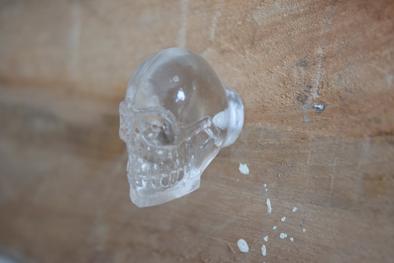 skull door knobs photo - 18